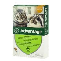 Адвантейдж коты до 4кг  (Цена за 1 пипетку)