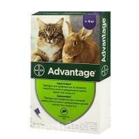 Адвантейдж коты от 4кг (Цена за 1 пипетку)