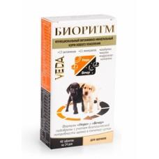Биоритм для щенков 48т