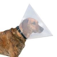 """1559 Воротник пластиковый """"Dog Exstreme"""" для собак и котов, размер XS (А: 22-25см, B: 7см)"""