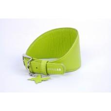 """34645 Ошейник """"Colllar GLAMOUR"""" для борзых без украшений (шир. 15мм, длина 23-27см) зеленый"""