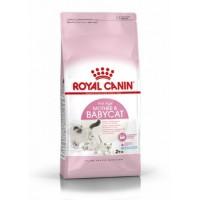 Сухой корм для беременных кошек Royal Canin Mother&Babycat