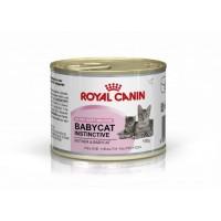 Консерва мусс для котят Royal Canin Babycat, 195гр