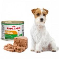 Royal Canin Adult Beauty (для собак мелких пород для здоровья кожи и красоты шерсти), банка 195гр