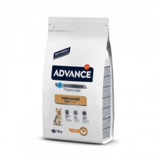 Advance Yorkshire Terrier, 1,5кг