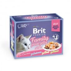 Brit Premium Cat pouch 1020 g семейная тарелка в желе