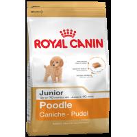 Royal Canin Poodle Junior (сухой корм для щенков породы пудель), 0,5кг