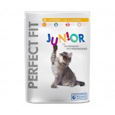 PERFECT FIT котята