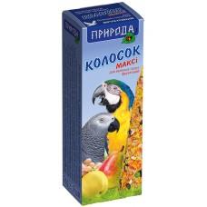 Колосок для   среднего попугая цитрус