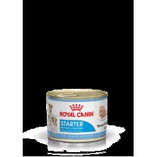 Royal Canin Starter mousse. Mother & Babydog, консервированный корм для беременных и лактирующих сук, а также щенков до 2-х месячного возраста,  195гр